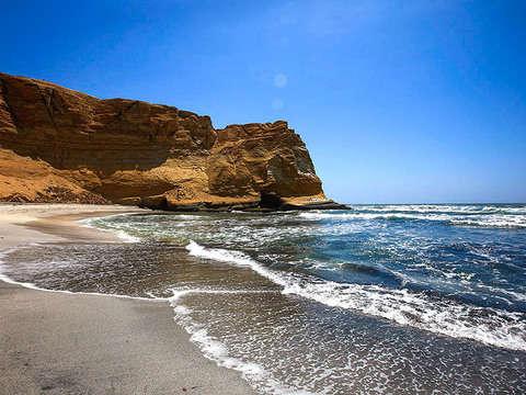 Full Day Paracas: Islas Ballestas y Reserva desde Paracas