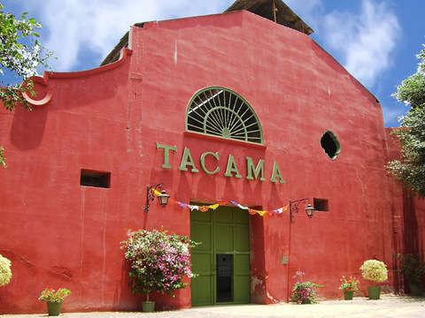 Tour: Bodegas de Vino, Sandboarding y Tubulares desde Ica