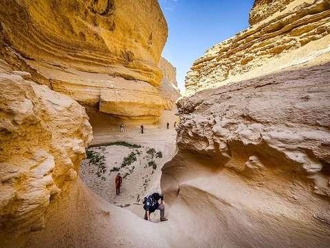 Ica: Tour Al Cañón de los Perdidos + Movilidad 4x4