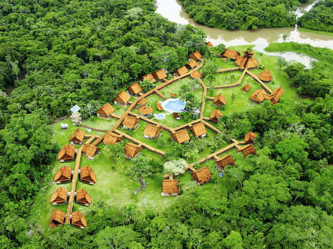 La Tropical y Mágica Selva