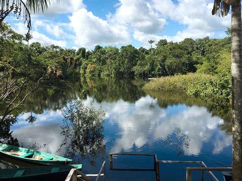 3d/2n Amazonas: Observación de Fauna y Tamshiyacu Tahuayo