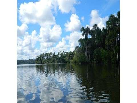 Selva Tropical 2d/1n