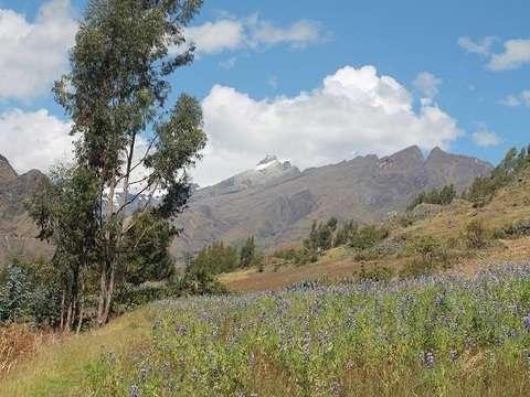 Huaraz, Chacas, Huari, San Marcos, Chavin de Huantar