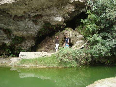 Selva Central Fabuloso