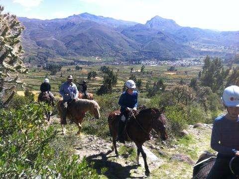 Colca Canyon Horseback Riding Tours - Colca Canyon 02d 01n